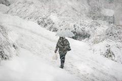 снежок падения Стоковые Фотографии RF