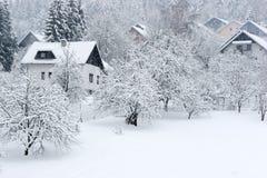 снежок падения Стоковая Фотография