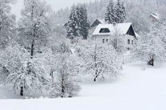 снежок падения Стоковая Фотография RF