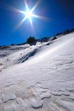 снежок пейзажа Стоковая Фотография RF