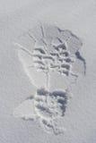 снежок печати ноги Стоковое фото RF