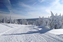 Снежок покрыл ландшафт Стоковое фото RF