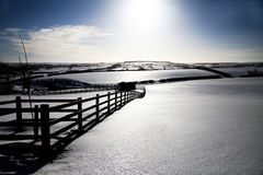 Снежок покрыл ландшафт Стоковые Фото