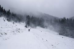 Снежок покрыл валы в горах зима температуры России ландшафта 33c января ural стоковые фотографии rf