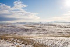 снежок поля фермы вниз Стоковая Фотография RF