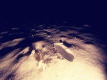 снежок предпосылки трассирует зиму Замороженная солома травы предусматриванная с ночой заморозка темной зябкой Стоковые Фото