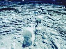 снежок предпосылки трассирует зиму Замороженная солома травы предусматриванная с ночой заморозка темной зябкой Стоковая Фотография RF