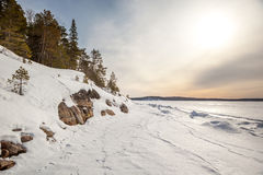 Снежок, свободный полет Barentse весны моря. Стоковые Изображения