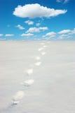 снежок следов ноги Стоковое фото RF