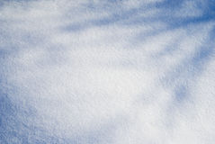 снежок тени Стоковая Фотография