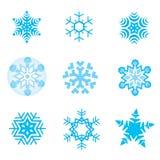 снежок хлопьев Стоковая Фотография