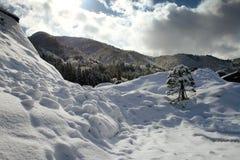снежок холма Стоковые Фотографии RF