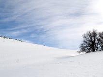 снежок холма стоковые фото