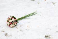 снежок цветков Стоковое Изображение RF