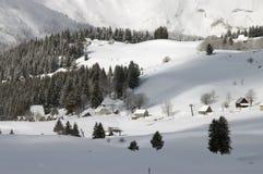 снежок 4 Стоковая Фотография RF
