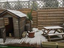 снежок Стоковая Фотография RF