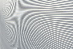 снежок Стоковое Изображение