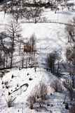 снежок стоковое изображение rf