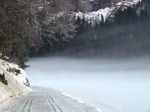 снежок fogy Стоковая Фотография