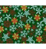 Снежок Poinsettias шелушится зеленая картина Стоковая Фотография