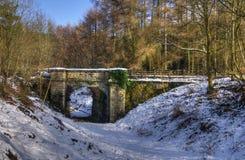 снежок railway mirystock моста Стоковые Изображения RF