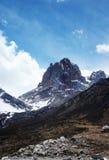 снежок sichuan горы фарфора Стоковые Изображения RF