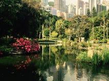 Снимок в парке Гонконга Стоковые Изображения