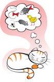 сновидения кота Стоковое Фото