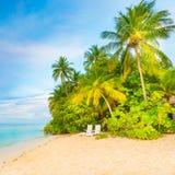 сновидения outdoors ослабляя детенышей женщины лета остров тропический Стоковые Фотографии RF