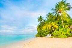 сновидения outdoors ослабляя детенышей женщины лета остров тропический Стоковые Изображения RF