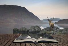 Сногсшибательное мощное рогач красных оленей смотрит вне через озеро к mo Стоковая Фотография RF