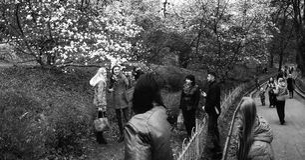 Сногсшибательный взгляд зацветая ботанических садов в Kyiv или Киеве, Украине стоковое изображение rf