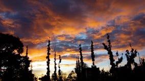 сногсшибательный восход солнца стоковые фотографии rf