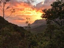 Сногсшибательный заход солнца на плантациях чая Стоковое Фото