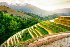 Сногсшибательный заход солнца на террасе риса около Guilin в Китае Стоковые Изображения
