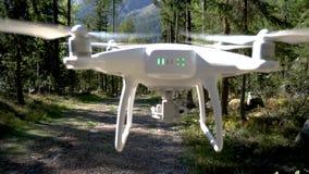 Сногсшибательный полет трутня над высокогорным лесом акции видеоматериалы