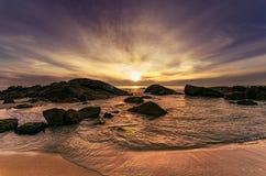 Сногсшибательное место пляжа собаки солнца Стоковые Изображения RF