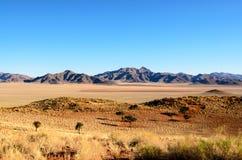 Сногсшибательно красивая зона пустыни Намибии Стоковое фото RF