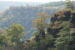 Сногсшибательные горы с красивыми деревьями Стоковое Фото