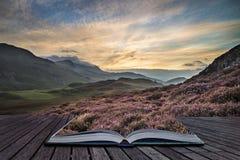 Сногсшибательный ландшафт горы восхода солнца с живыми цветами и щеголем стоковая фотография rf