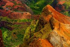 Сногсшибательный взгляд в каньон Waimea, Кауаи, Гаваи Стоковое фото RF
