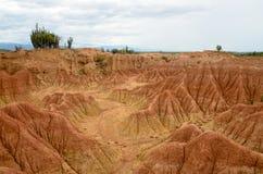 Сногсшибательный взгляд к красочным пескам леса Tatacoa тропического сухого Стоковые Фото