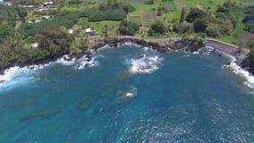 Сногсшибательный взгляд seascape панорамы трутня антенны 4k на парке поля зеленого цвета Гаваи Keanae острова Мауи в тропическом  акции видеоматериалы