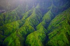Сногсшибательный вид с воздуха эффектных джунглей, Кауаи стоковые изображения rf