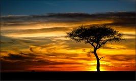 Сногсшибательный заход солнца Стоковые Фотографии RF