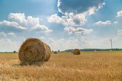 Снопы соломы в поле, сбора стоковые изображения rf