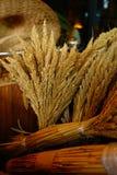 Сноп пшеницы Стоковое Изображение RF