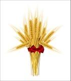 Сноп ушей пшеницы с смычком Стоковые Изображения
