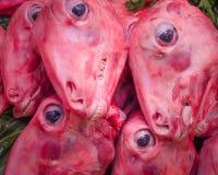 Снятые кожу с головы овец Стоковые Фото