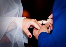 Снятый свадьбы или обручального кольца Стоковая Фотография RF
